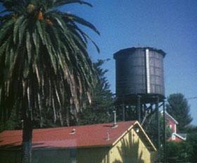 Water tank & palm